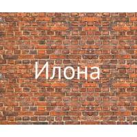 Имя Илона на кирпичной стене