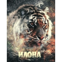 Ава с именем Илона с тигром