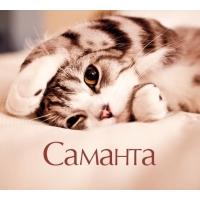 http://picsnames.ru/imgmig/6210.jpg
