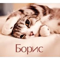 Борис на открытке с котенком