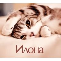 Илона на открытке с котенком